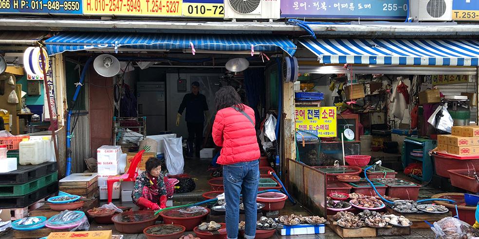 transit_korea_2